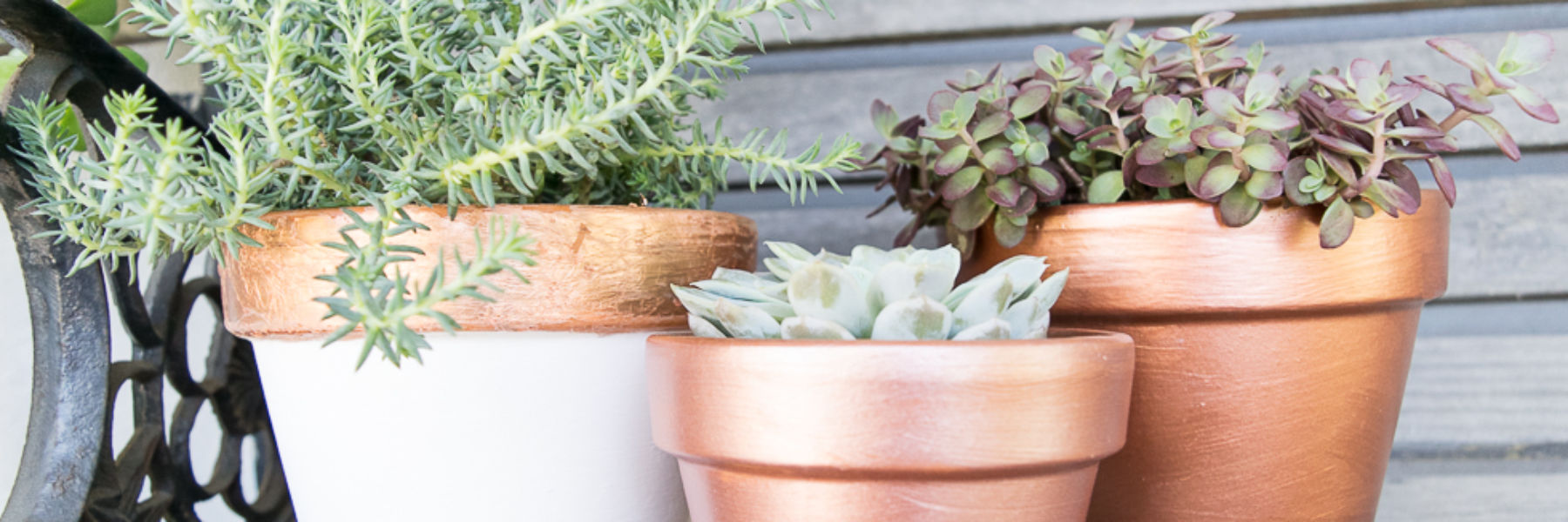 DIY-terra-cotta-planter-transformation