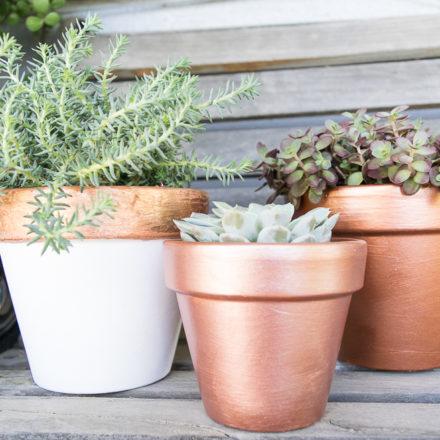 DIY-terra-cotta-planter-transformation