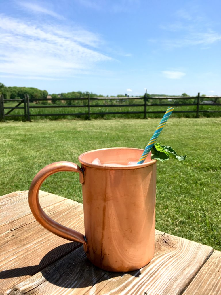 Mojito-copper-mug-summer-drink