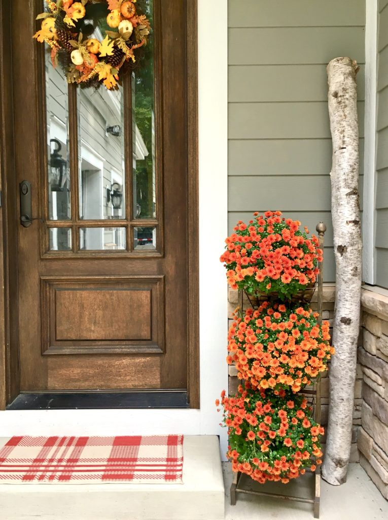 Farmhouse Side Door