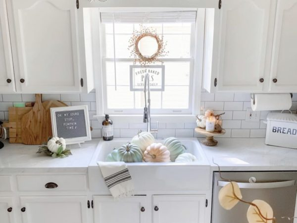 The Best Farmhouse Sink EVER!