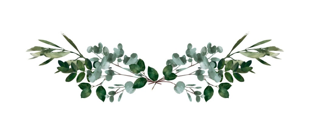 Eucalyptus round Green leaf Wreath, greenery branches,